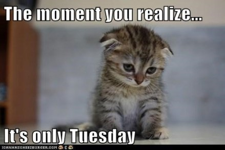 The moment you realize.....
