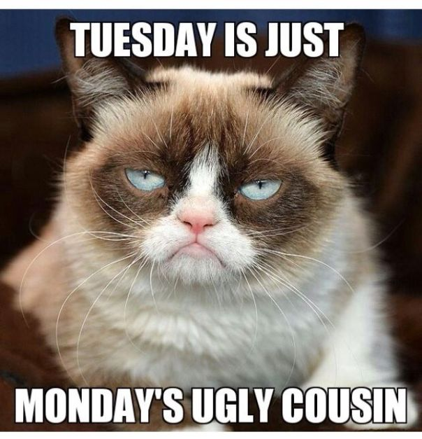 Tuesday is just Mondays ugly cousin