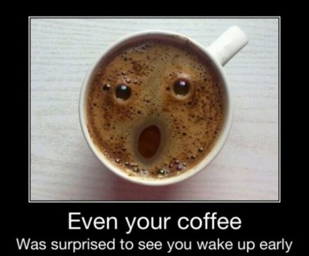 even your coffee was surprised