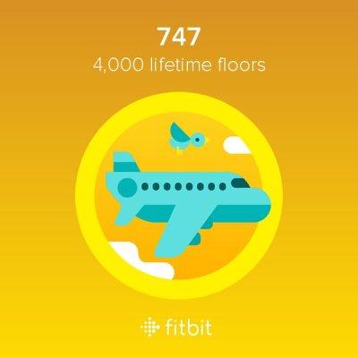 De 747 badge
